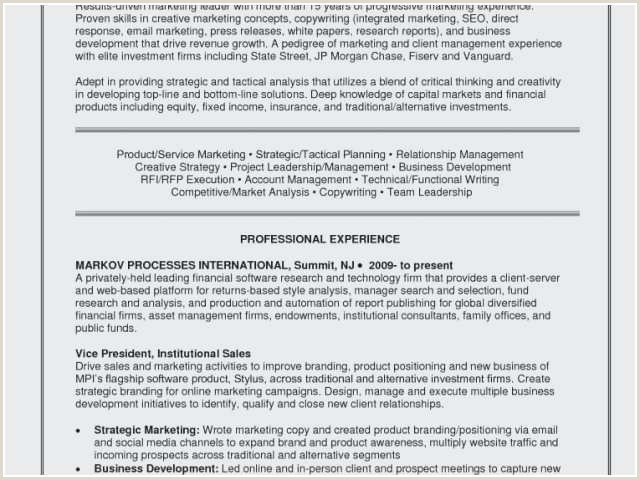 Sales Person Resume Resume software Consultant Examples – Salumguilher