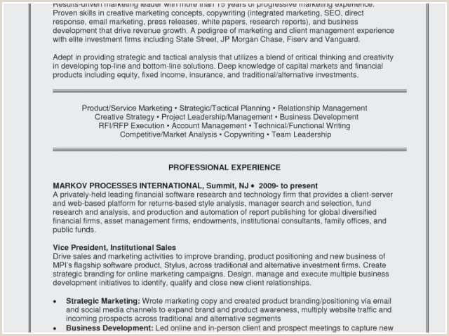 Resume software Consultant Examples – Salumguilher