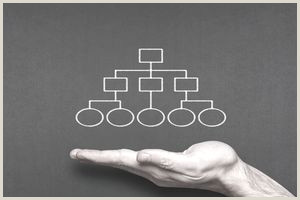 What Do Job Titles Signify on the Organization Chart