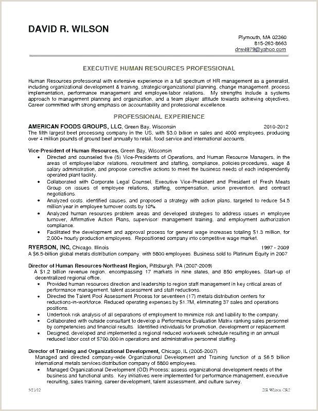 Volunteer Resume Template Cv Work For Example