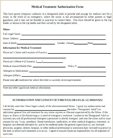 Guardianship Authorization Letter Temporary Custody Form