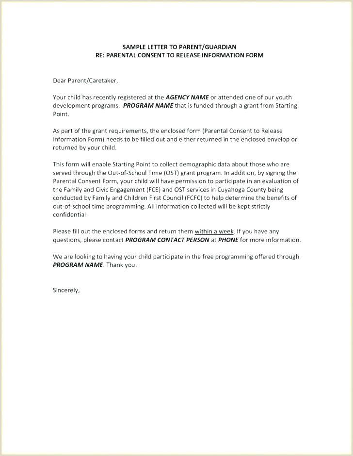 Sample Permanent Guardianship Letter Authorization Letter for Guardianship Sample – Nasi Uyo
