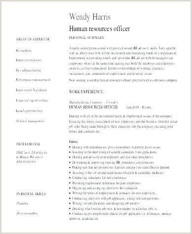 Call Center Resume Template Agent Simple – surcreative