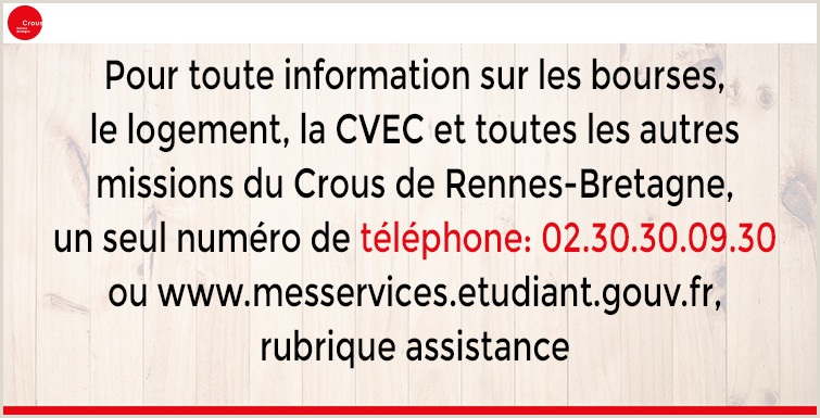 Sample Resume for Call Center Agent without Experience Crous Rennes Bretagne