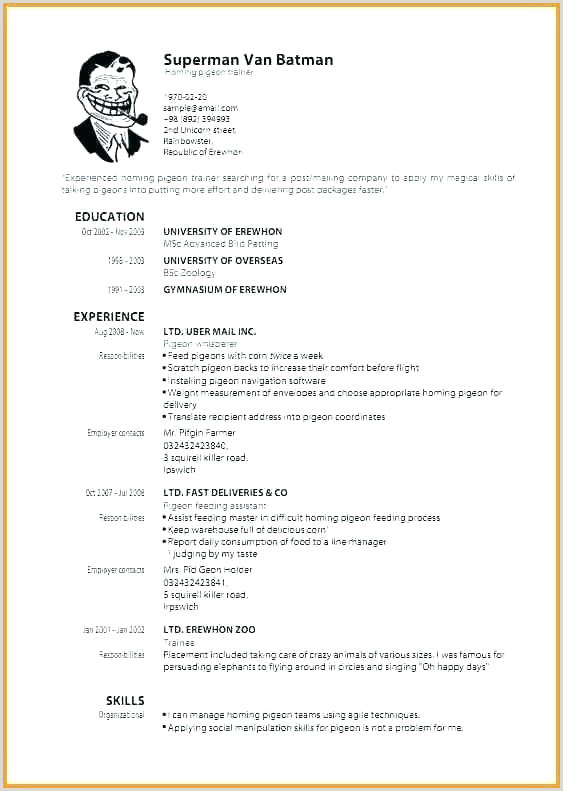 Sample Resume for Child Care Kids Resume Templates Definition Puter Template for