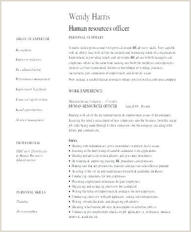 Call Center Operator Resume Template Download Free Example