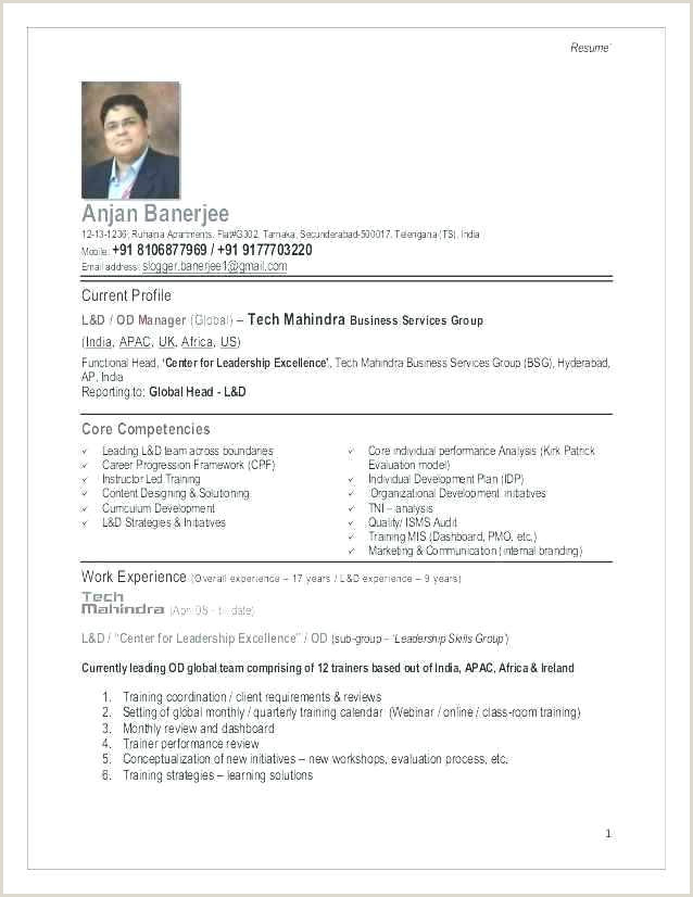Sample Resume for Fundraising Director Ad Book Fundraiser Template – Chanceinc
