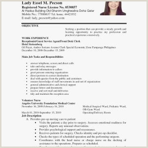 Sample Resume format for Job Pdf Sample Resume format In Pdf File Valid Resume Samples Pdf