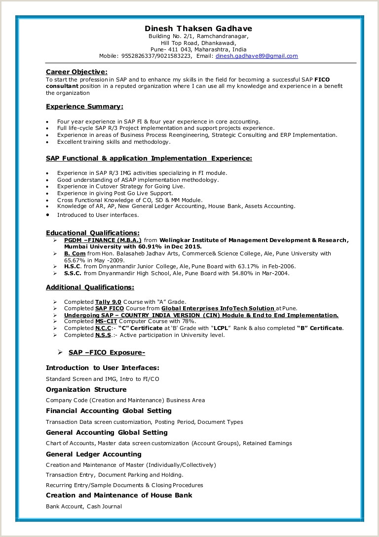 Sap Fico Resume Resume Samples