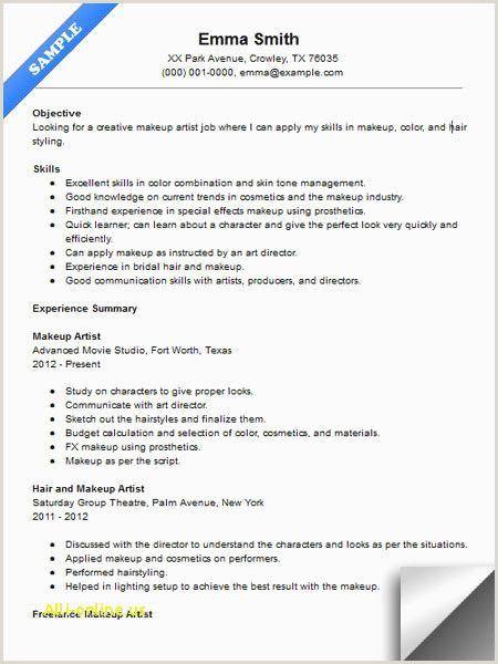 Summary Resume Example Sample Cv Examples New Hybrid Resume