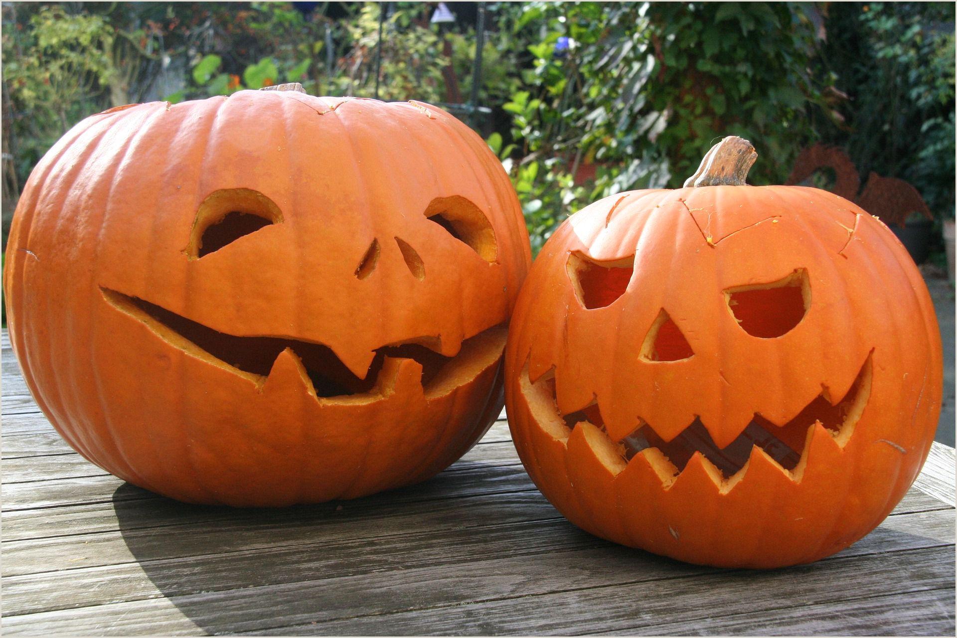 Scar Pumpkin Carving Patterns Free Pumpkin Carving Patterns