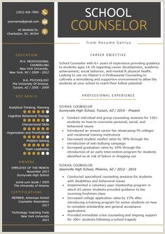 School Counseling Resume 349 Best Resume Samples Images In 2019