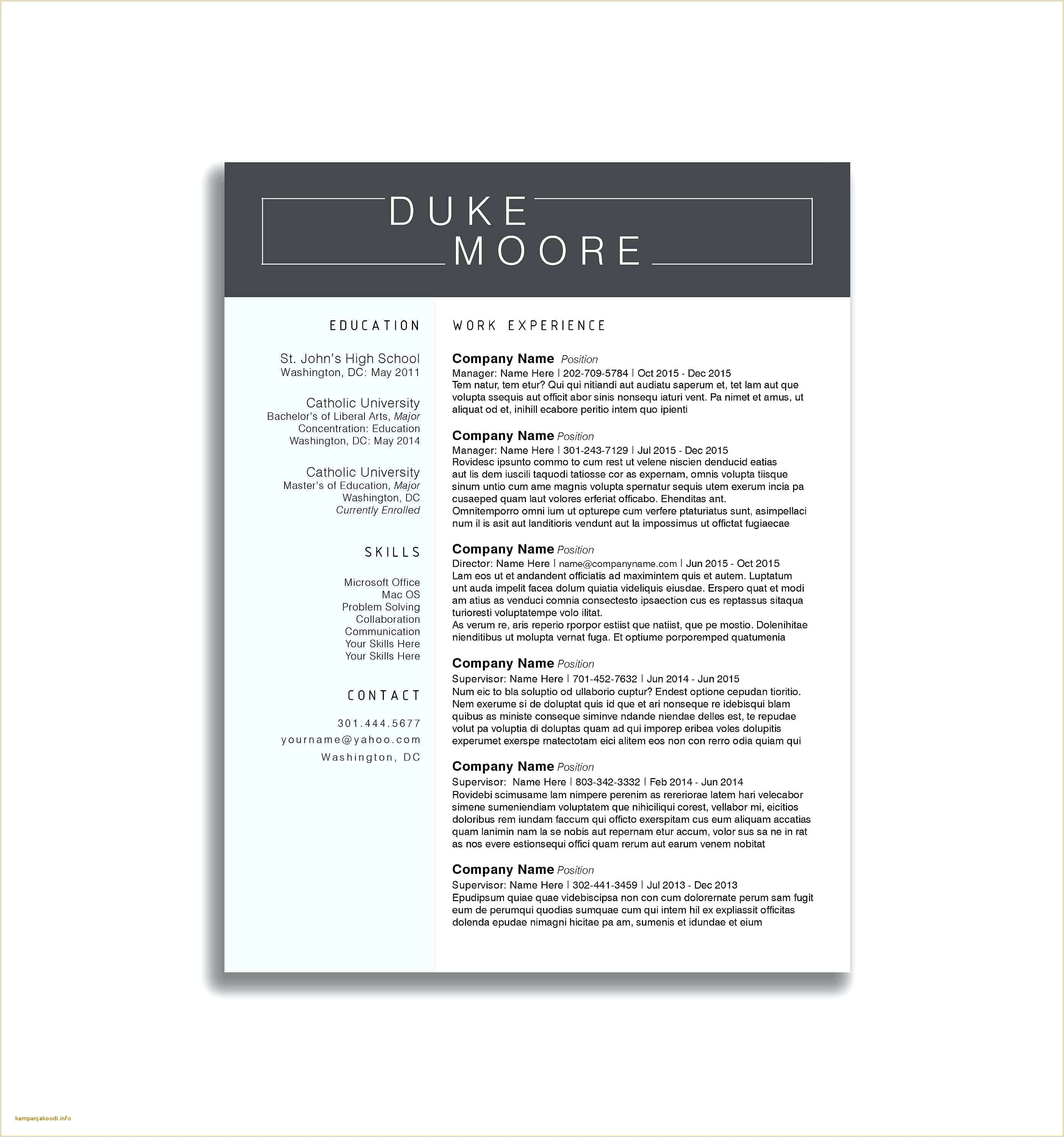 resume Youth Counselor Resume