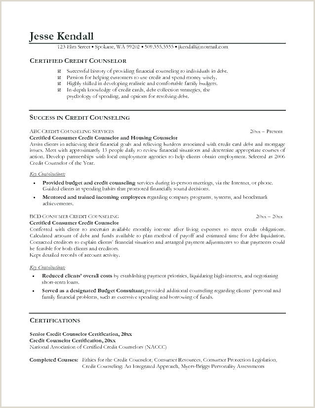 School Counselor Resume Samples College Counselor Resume – Emelcotest
