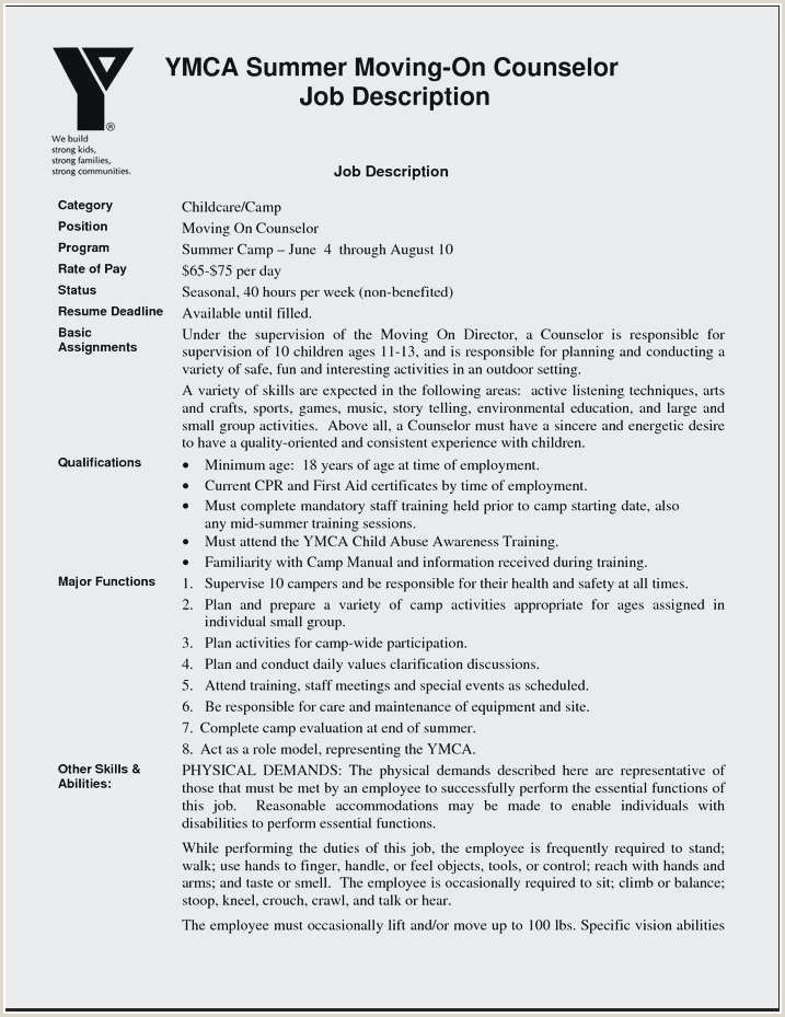 Luxury Sample Counselor Resume