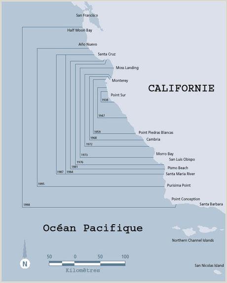Loutre de mer — Wikipédia