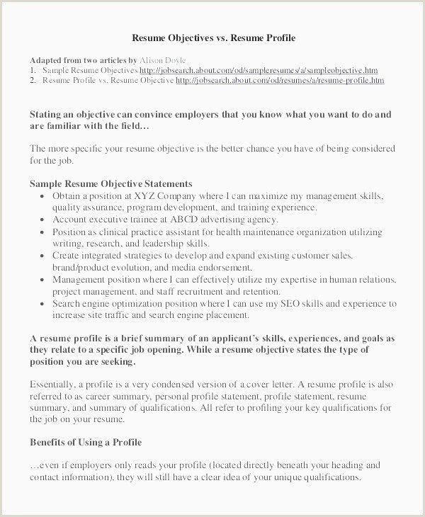 Construction Job Resume Sample Resume for Construction