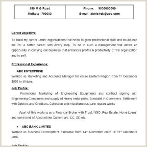 Secretary Resume Sample Cv Agent Administratif Joli Legal Secretary Resume Example