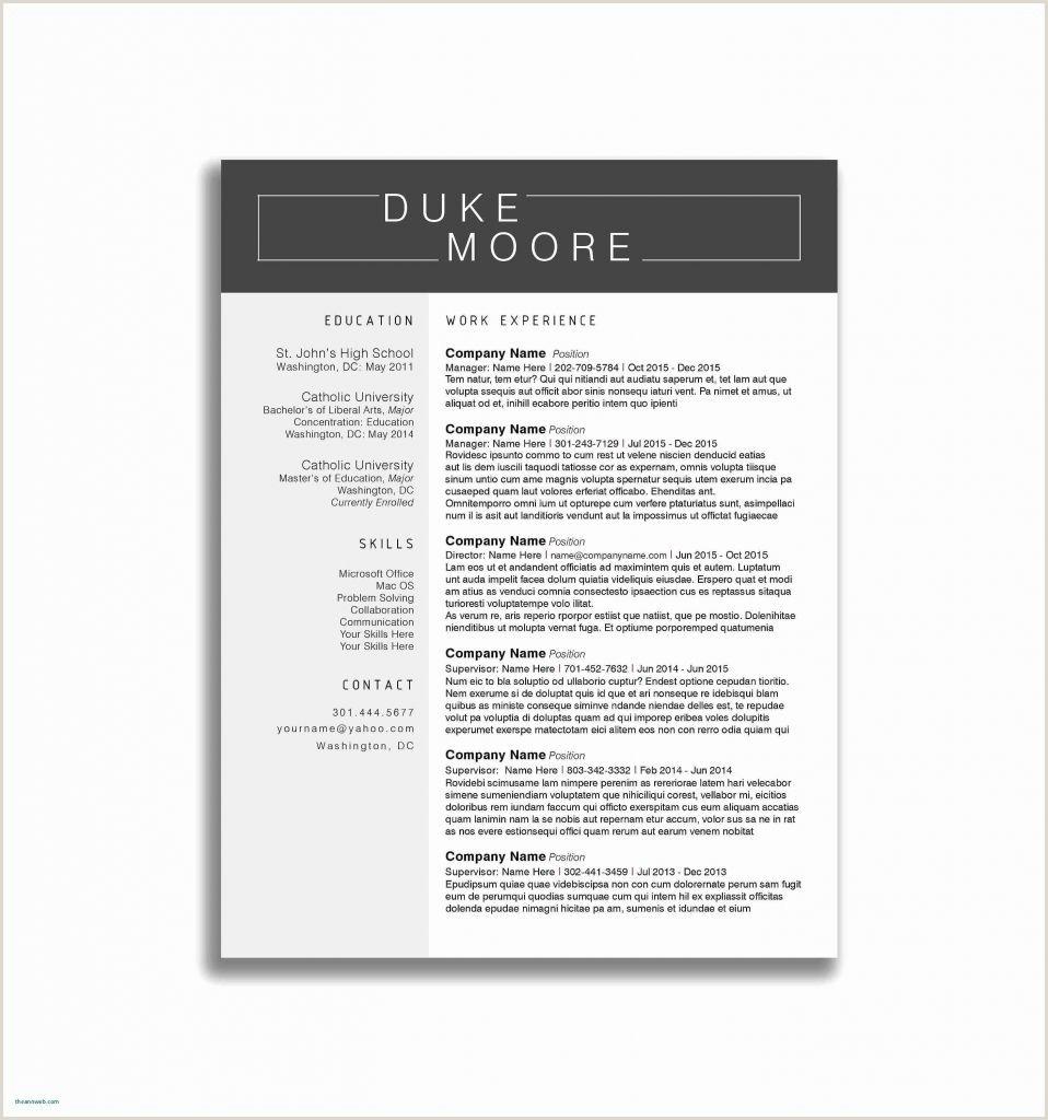 Cover Letter Vs Resume New Letter Self Introduction format
