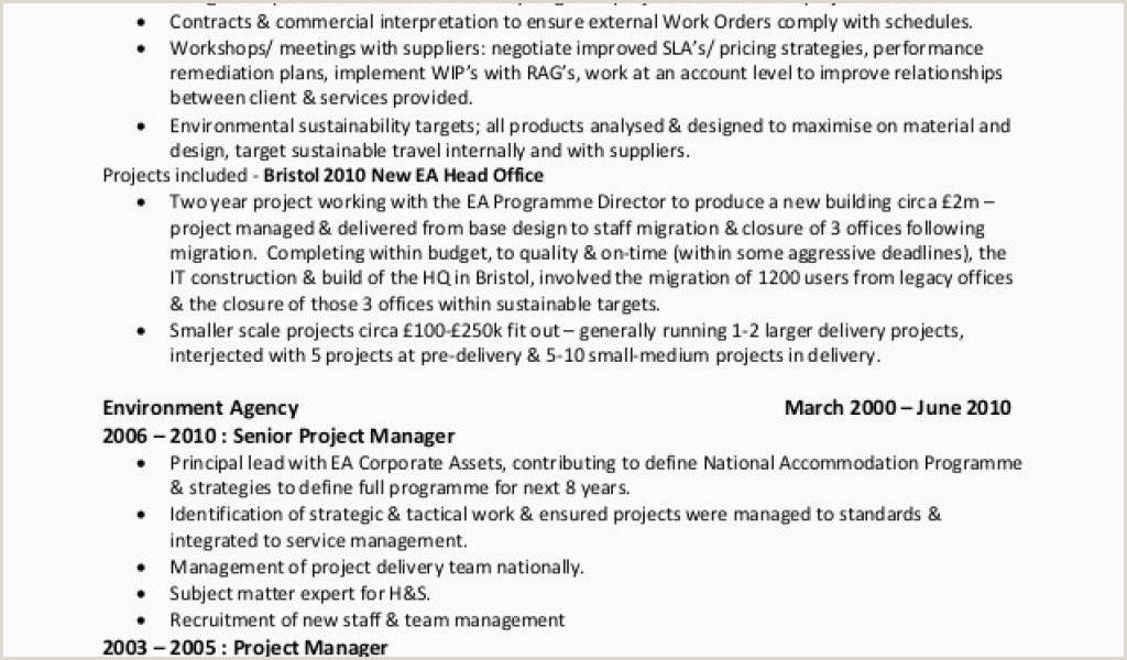 Senior Manager Resume Best Best Project Manager Resume