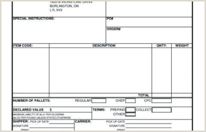 Shipper Letter Instruction Template and Request to Bank