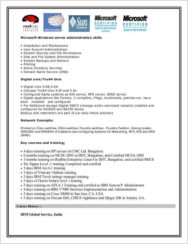 Cv Career Exemple 25 Designs Sample Resume Career Summary