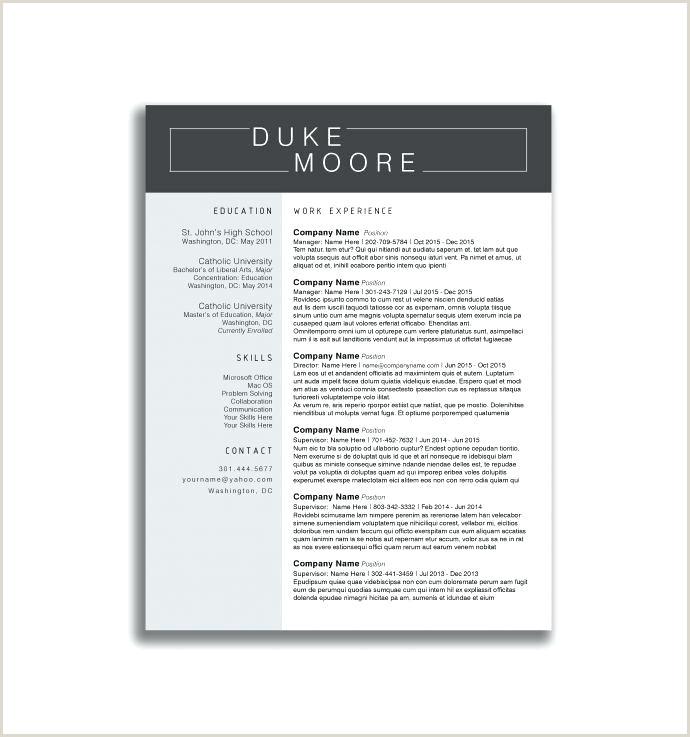 Standard Resume Template Word College Student Resume