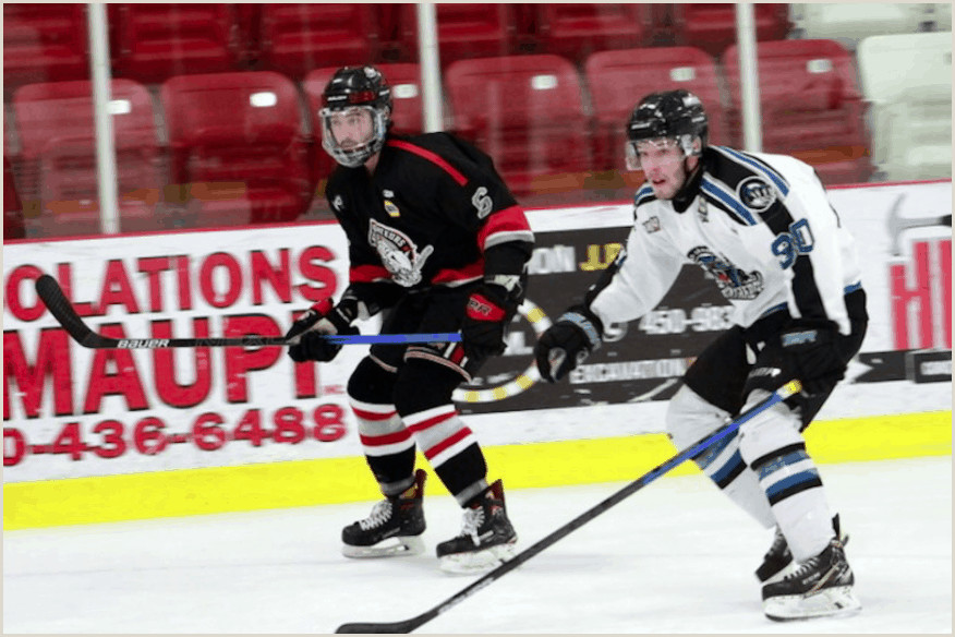 Sims Position Nursing Panth¨res De St Jér´me Ligue De Hockey Junior Aaa Du Québec