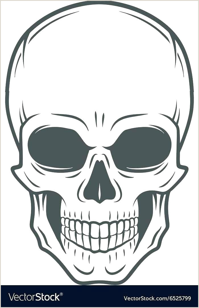 Blank Sugar Skull Template Ll Cute Coloring Printable