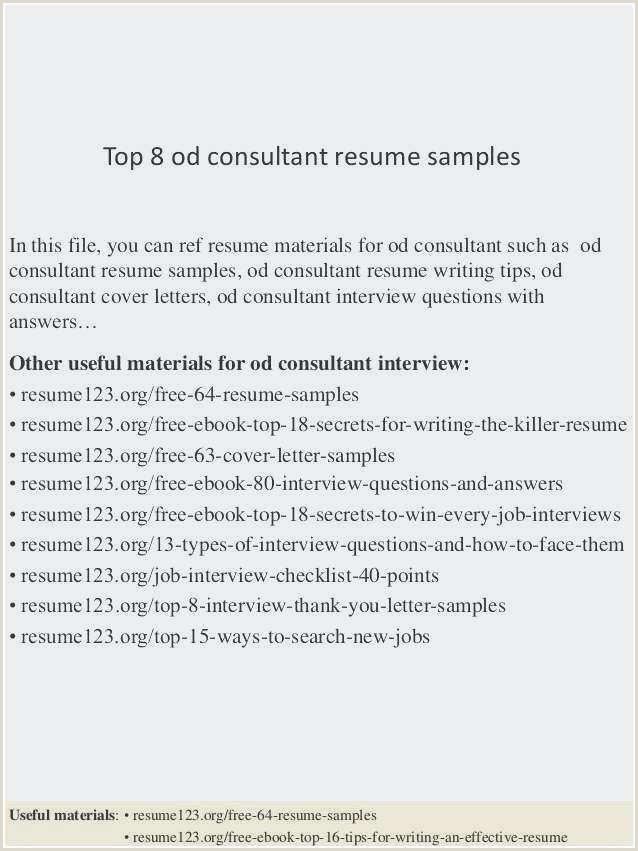 Best Resume Template for software Developer – Salumguilher