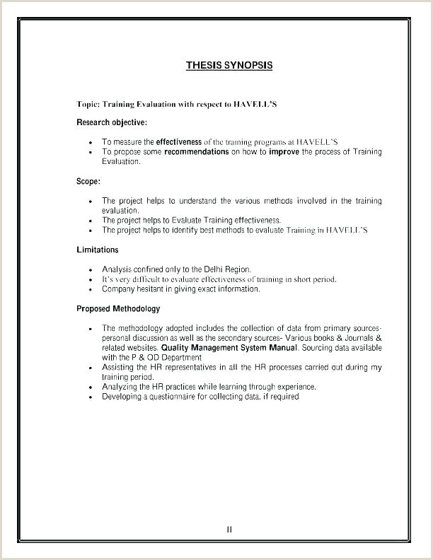 software assessment report template