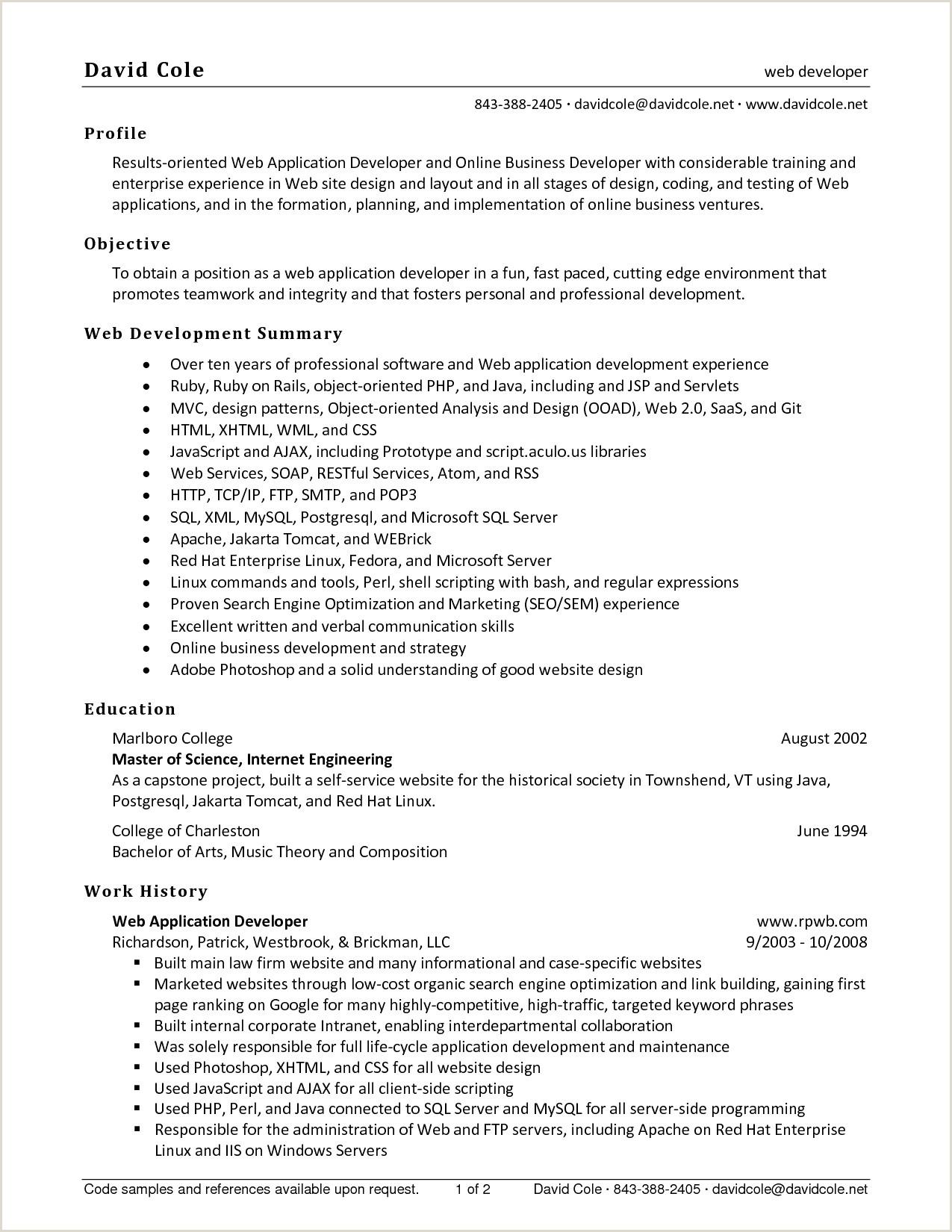 Developper Une Application élégant Web Developer Resume
