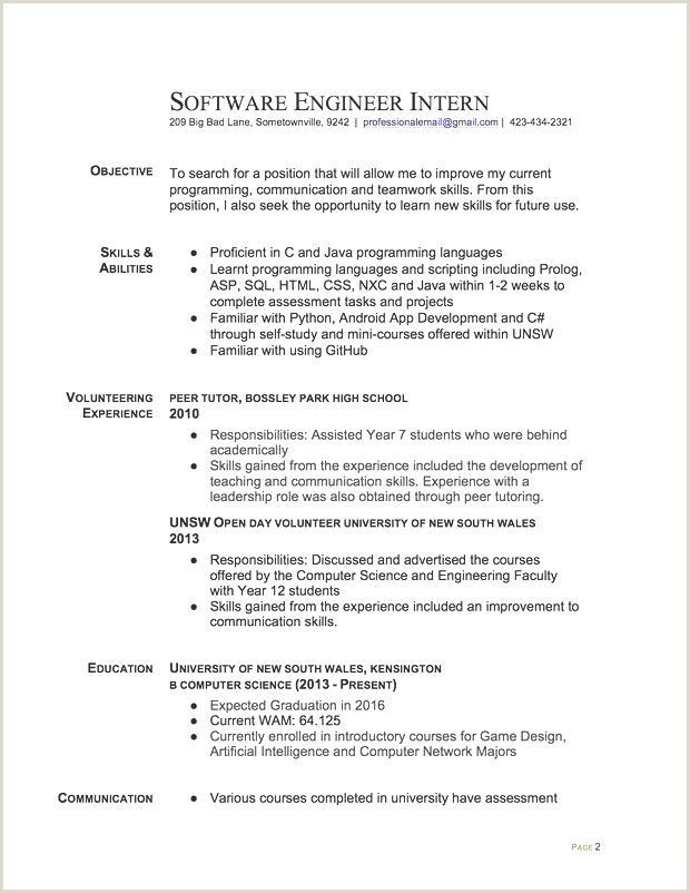 Software Programmer Resume Luxury software Programmer Resume Sample