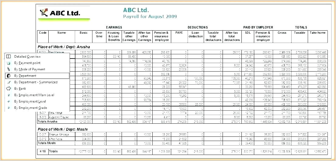 Bud Plan Sample Business Project Financial Plan Template