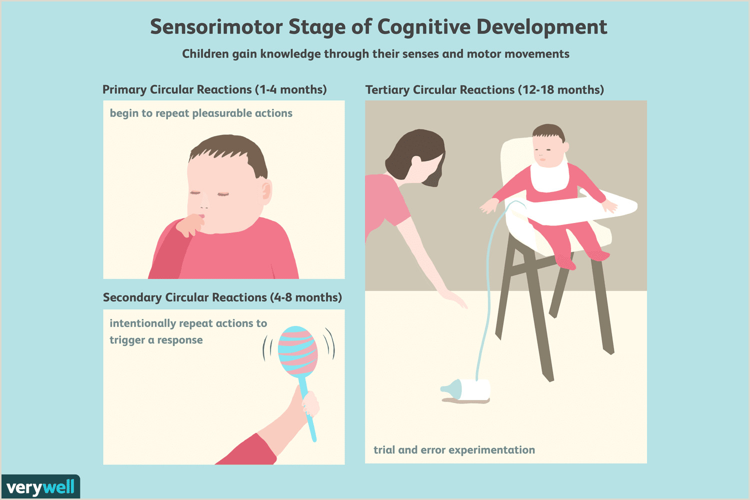 Stage Play format Example the Sensorimotor Stage Of Cognitive Development