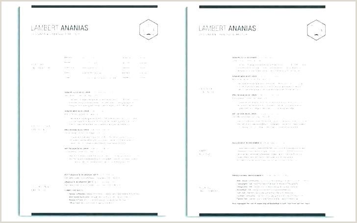 2 page cv template – caseyroberts
