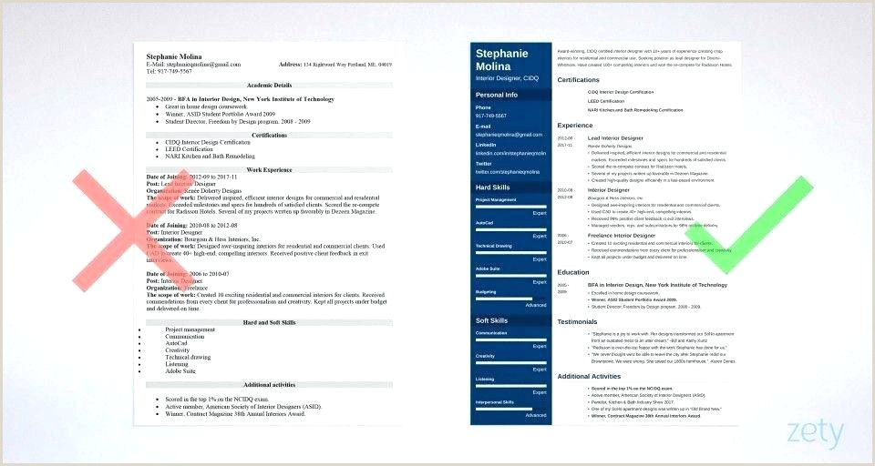 Standard Cv format 2019 Free Download Resume Template 2017