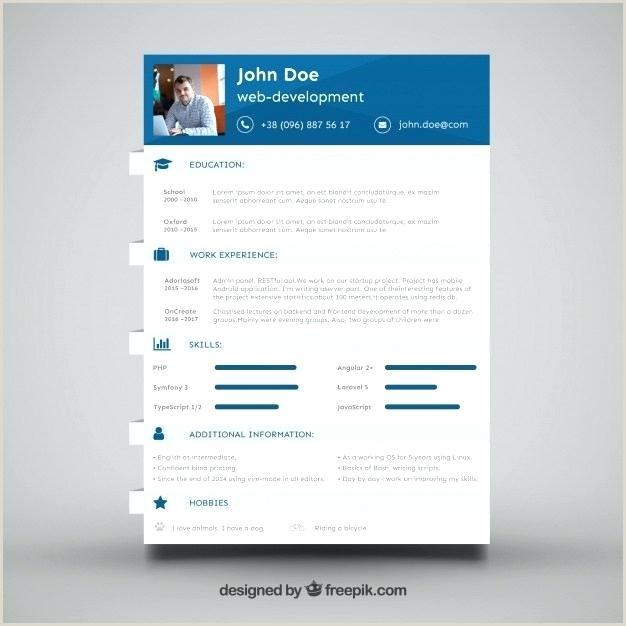 It Developer Entry Level Web Resume Template Java Cv Example