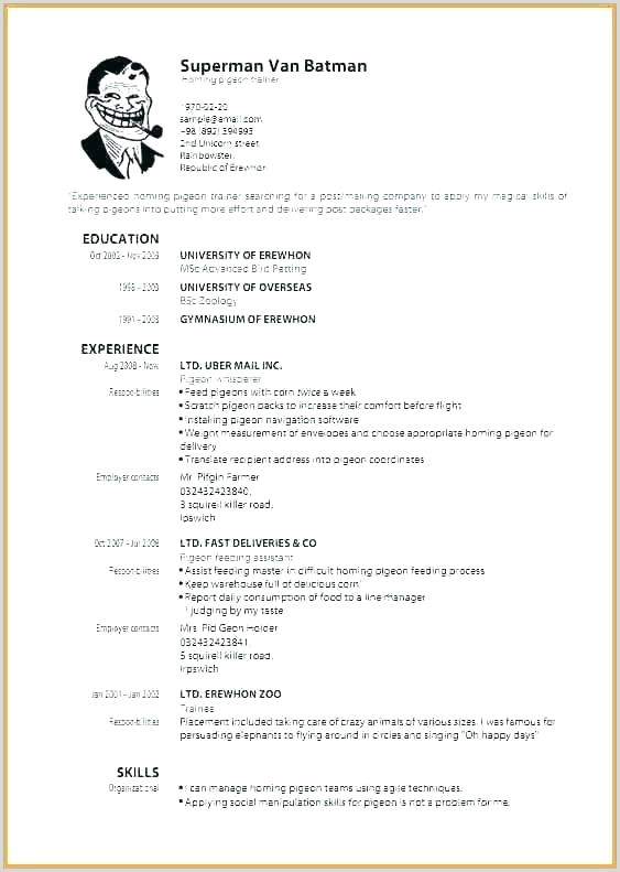 Standard Cv format Download Free Curriculum Vitae Template Download Editable Resume format