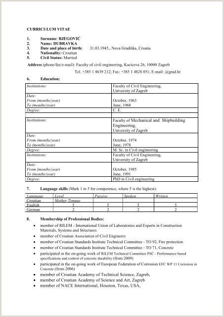 Standard Cv format for Bangladesh Pdf A Standard Cv format Zaloyrpentersdaughter