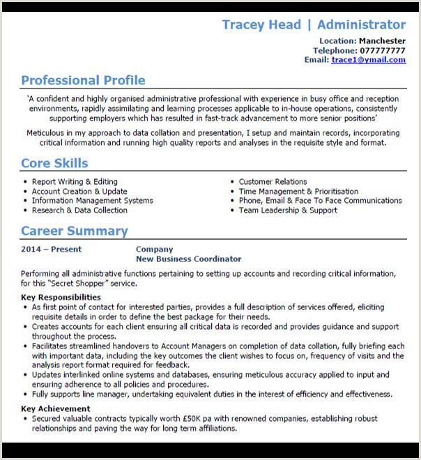 Standard Cv format for Bank Job 7 Best Cv Templates