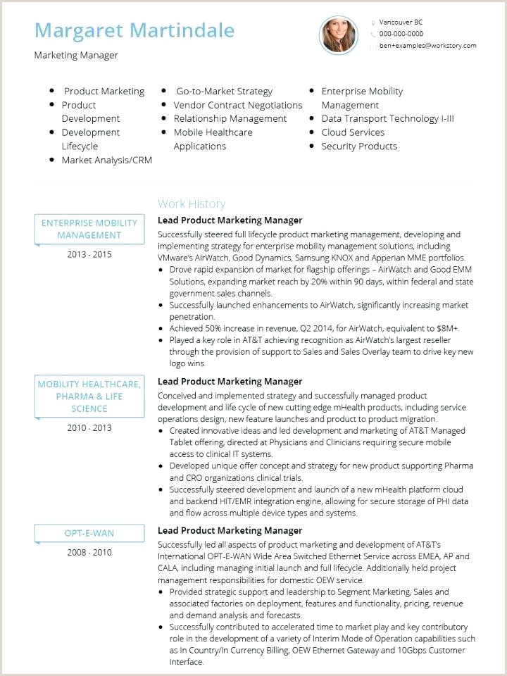 Standard Cv format for Freshers Doc Curriculum Vitae Template Doc – Metabots
