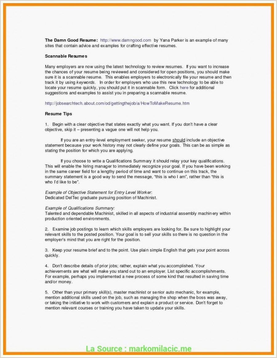 Standard Cv format for Hotel Job 80 Lettre De Motivation Hotellerie De Luxe