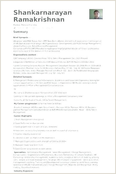 consulting cv template
