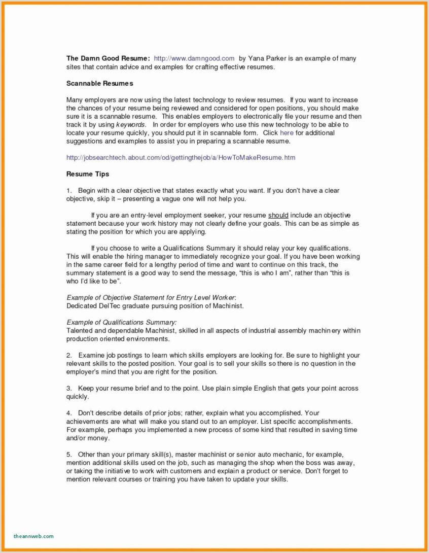 Standard Cv format for It Professional Resume Sample Professional Lab Technician Skills Resume