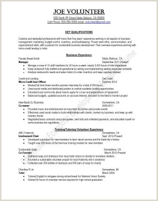 Standard Cv format for Mba Students Resume Samples