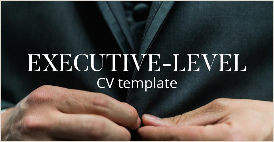 CV template A plete guide to writing an Executive level CV