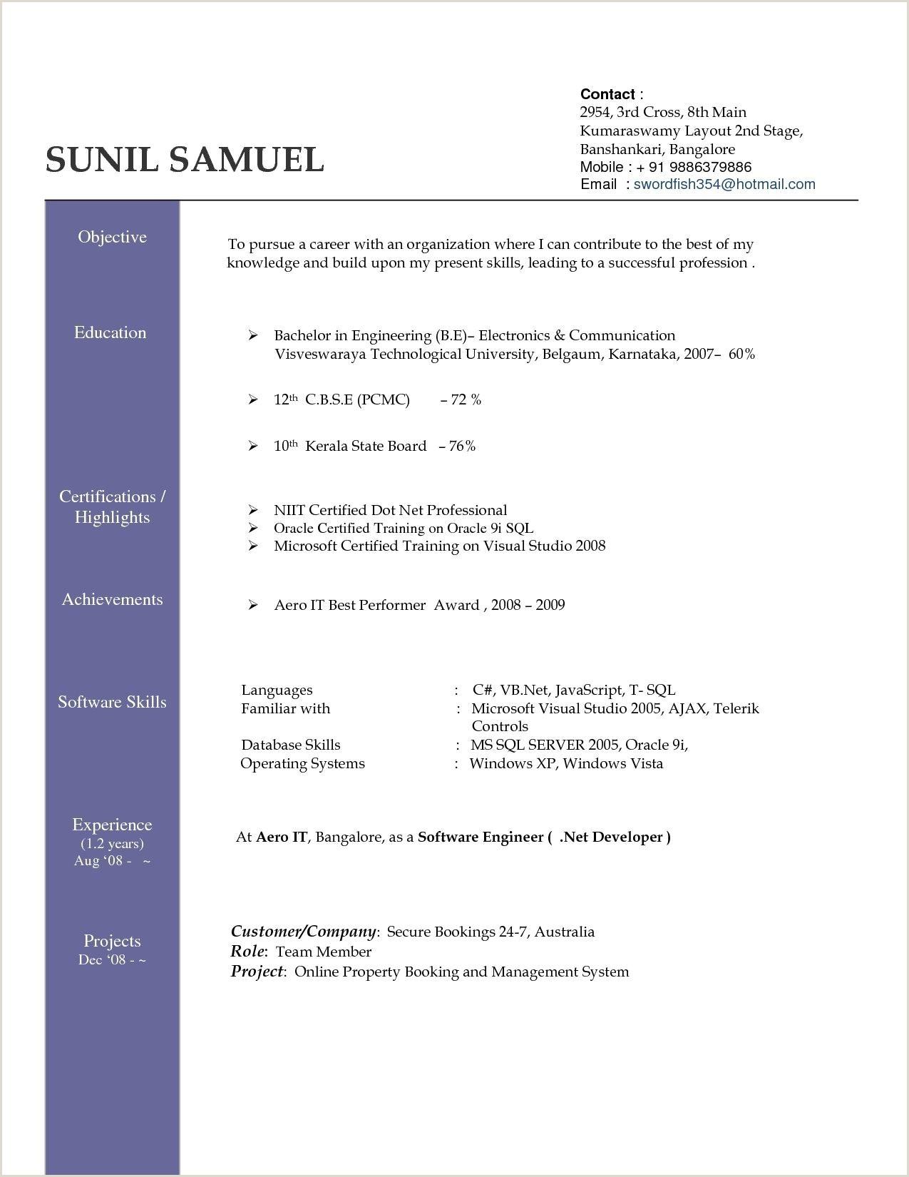 German Cv Template Doc Professional Resume Writers