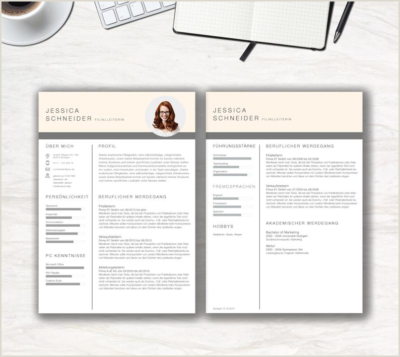 Application Template Clean Chart for MS office German Cvtemplate