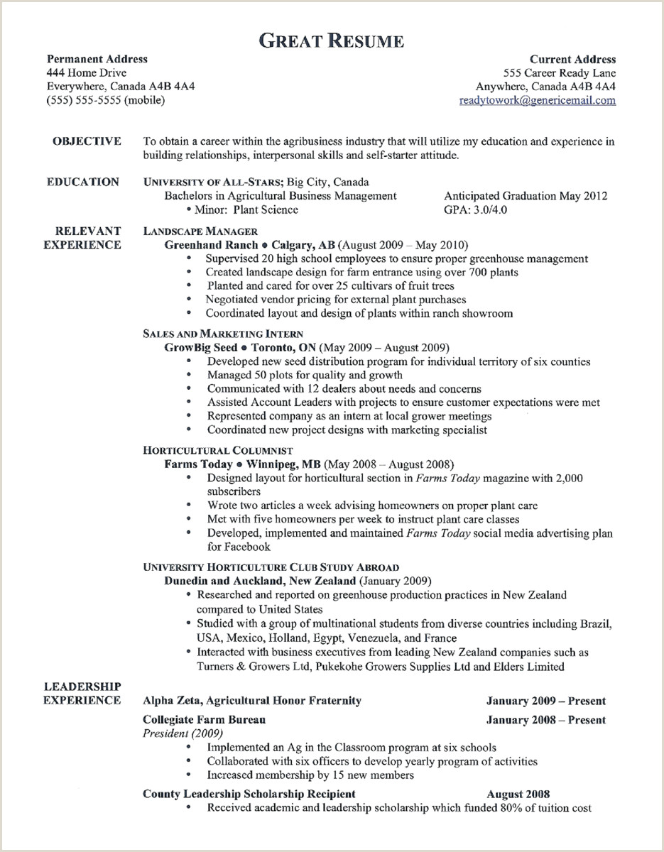 Standard Cv format In New Zealand Best Tips for Writing with A Resume Template for 2020